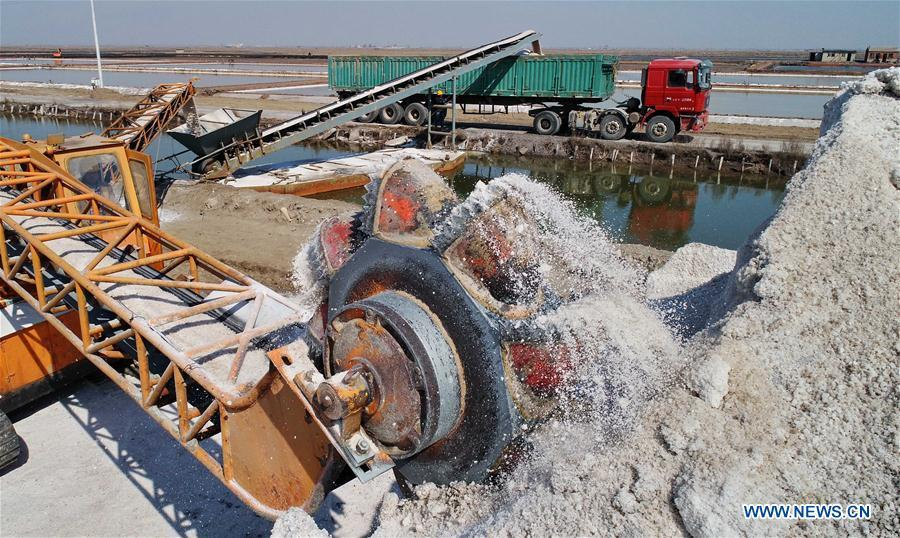 Crude salt is loaded onto a truck at the Daqinghe salt field in Tangshan City, north China\'s Hebei Province, April 22, 2019. Some 270,000 tons of salt is expected to be produced this spring at the Daqinghe salt field. (Xinhua/Yang Shiyao)