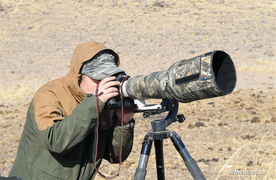 Shuanglong, a man of Mongolian ethnic group, takes pictures of raptors at a grassland along the Hulun Lake in the Hulun Buir City, north China\'s Inner Mongolia Autonomous Region, April 12, 2019. Shuanglong, a volunteer born in the 1980s, has been dedicated to protecting wildlife inhabiting along the Hulun Lake over the past ten years. Over 40 endangered animals have been saved through his efforts. Shuanglong has organized various activities including photo exhibitions and lectures, as a way to raise awareness of wildlife protection among the public. Affected by Shuanglong, some volunteers also joined him to protect wildlife along the Hulun Lake. (Xinhua/Peng Yuan)