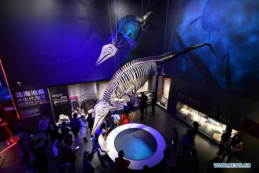 Photo taken on April 25, 2019 shows exhibits of maritime creatures at an exhibition hall themed \