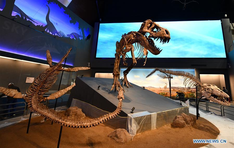 Photo taken on April 25, 2019 shows fossil models at an exhibition hall themed \