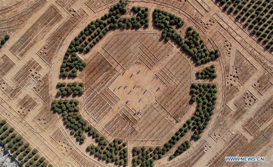 Aerial photo taken on May 2, 2019 shows workers planting trees at the site of ecological restoration project on Jinling iron mine in Caiyuan Township of Qian\'an City, north China\'s Hebei Province. Local government has devoted to the reclamation and afforestation of mine areas in recent years. (Xinhua/Yang Shiyao)