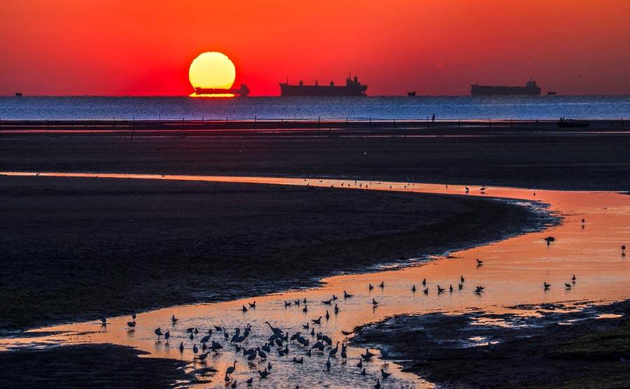 Sunrise over the sea, Qinhuangdao city, North China\'s Hebei Province.  (Photo provided to chinadaily.com.cn)