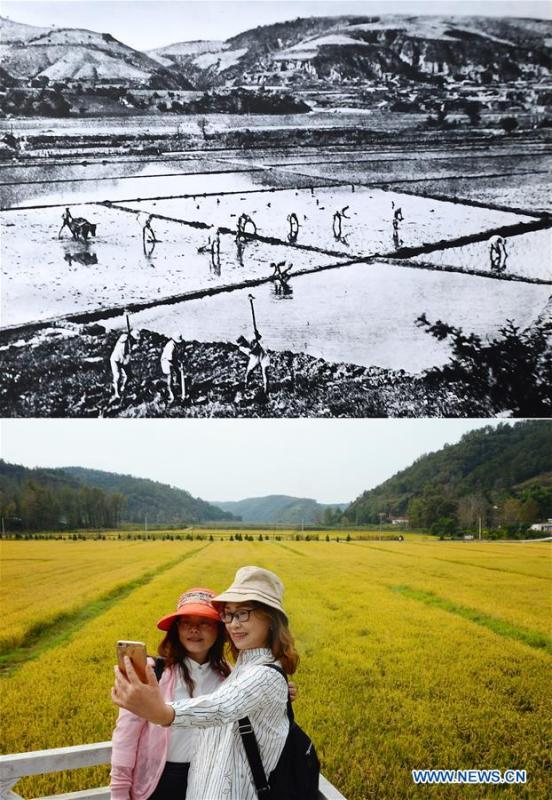 Combo photo shows a farming scene at Nanniwan during the War of Chinese People\'s Resistance Against Japanese Aggression in Yan\'an, northwest China\'s Shaanxi Province (top, file photo) and visitors taking photos at Nanniwan in Yan\'an on Sept. 12, 2018 (bottom, taken by Liu Xiao). Yan\'an, a former revolutionary base of the Communist Party of China (CPC), is no longer labeled \