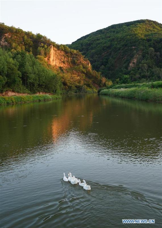 Photo shows the scenery of Ziwuling National Nature Reserve in Yan\'an, northwest China\'s Shaanxi Province on Aug. 22, 2018. Yan\'an, a former revolutionary base of the Communist Party of China (CPC), is no longer labeled \