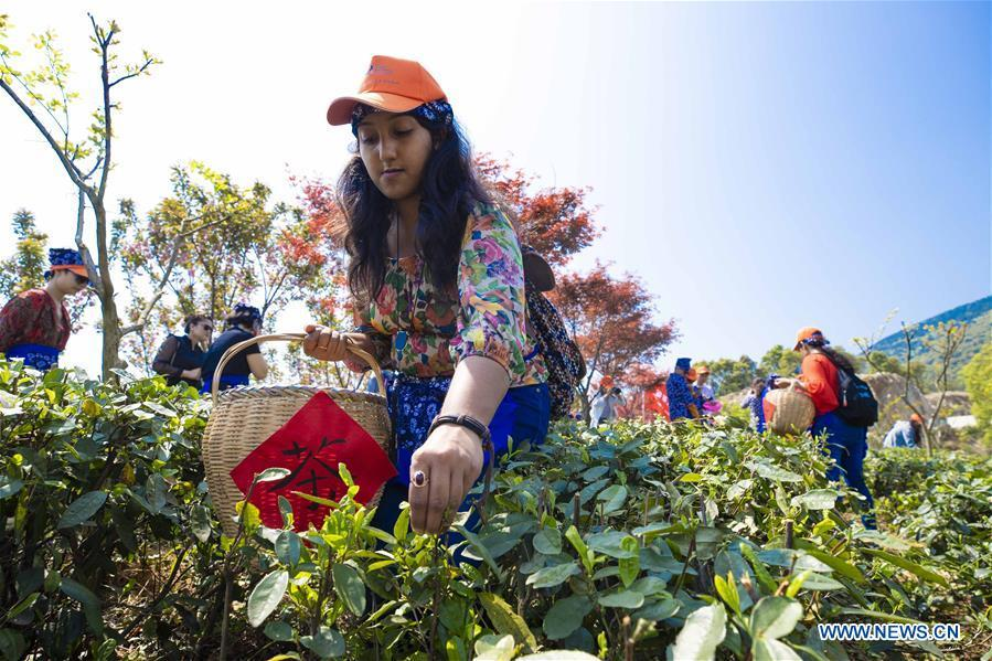 Foreign students pick tea leaves in Lushan City, east China\'s Jiangxi Province, on April 8, 2019. As an important part of Asian culture, tea is a special bond among Asian countries to deepen friendship and boost mutual exchanges. China will hold the Conference on Dialogue of Asian Civilizations starting from May 15. Under the theme of \