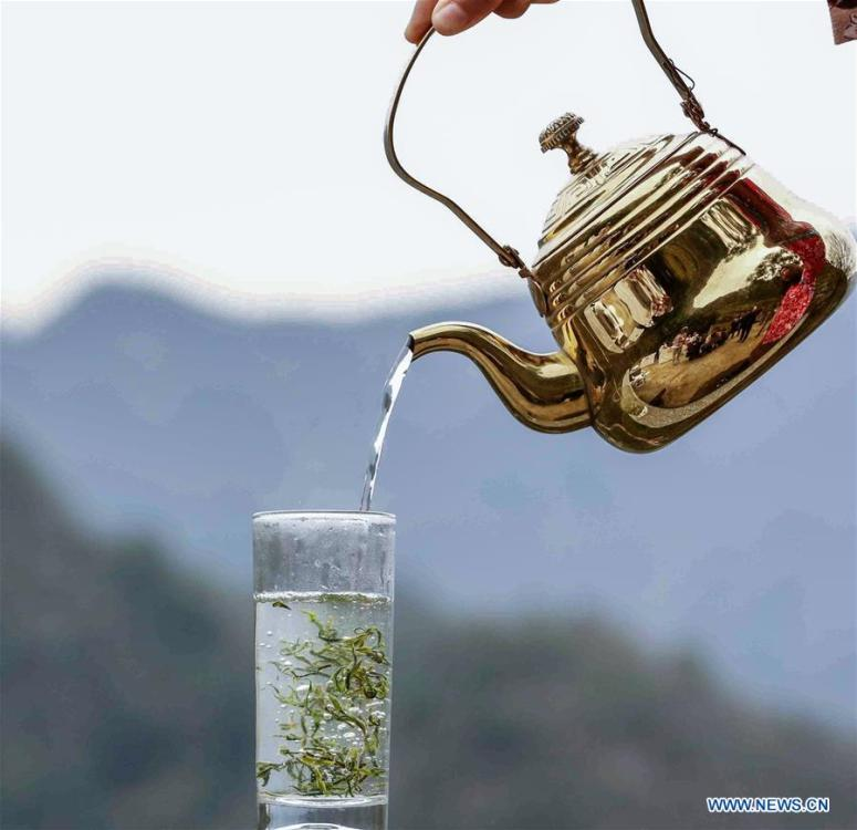 A cup of tea is served in Jiukeng Township, Chun\'an County, east China\'s Zhejiang Province, on March 26, 2019. As an important part of Asian culture, tea is a special bond among Asian countries to deepen friendship and boost mutual exchanges. China will hold the Conference on Dialogue of Asian Civilizations starting from May 15. Under the theme of \