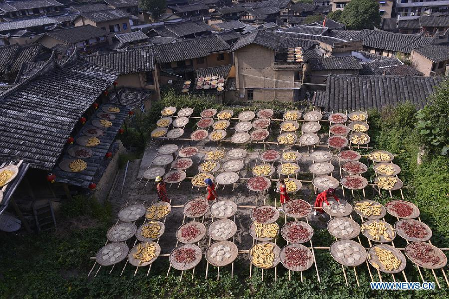 Tourists view the crops aired by farmers at Guifeng Village of Sanming City, southeast China\'s Fujian Province, Oct. 6, 2018. China will hold the Conference on Dialogue of Asian Civilizations starting from May 15. Under the theme of \