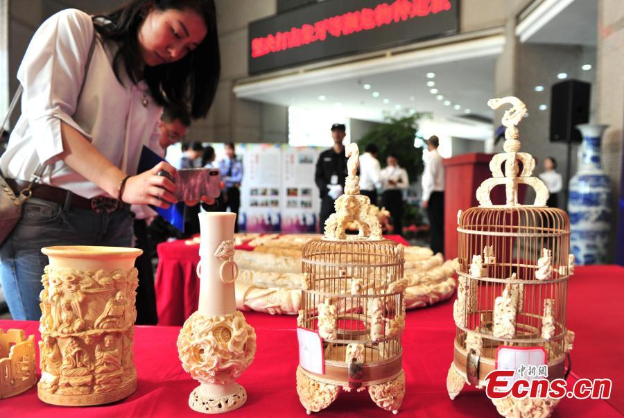 Ivory products seized by Hangzhou Customs before their handover to forestry authorities in Hangzhou City, East China\'s Zhejiang Province, May 14, 2019. Hangzhou Customs showcased endangered species and wildlife products weighing 863.69 kilograms. (Photo: China News Service/Zhang Yin)