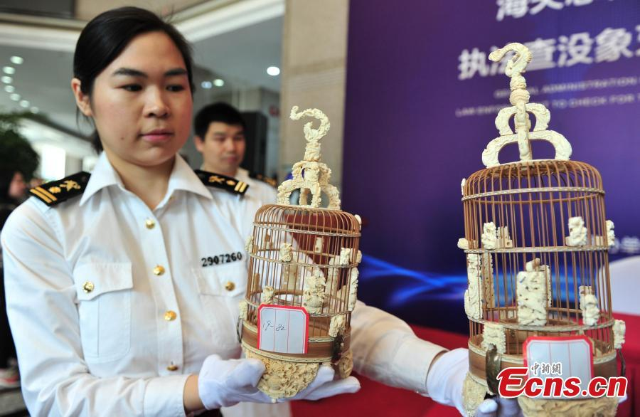 Photo taken on May 14, 2019 shows ivory products seized by Hangzhou Customs before their handover to forestry authorities in Hangzhou City, East China\'s Zhejiang Province. Hangzhou Customs showcased endangered species and wildlife products weighing 863.69 kilograms. (Photo: China News Service/Zhang Yin)