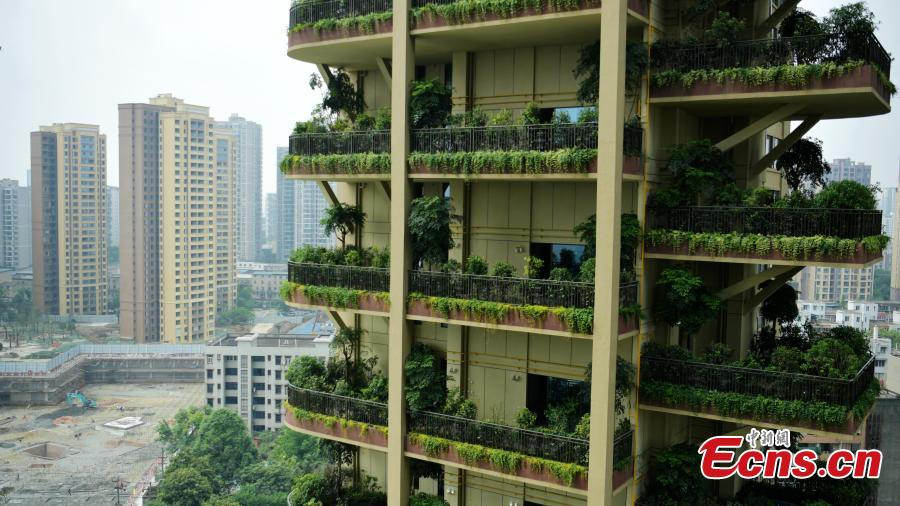 """A """"vertical forest"""" residential community with apartment buildings boasting shrub-covered balconies in Chengdu City, Sichuan Province, May 14, 2019.  (Photo: China News Service/Liu Zhongjun)"""