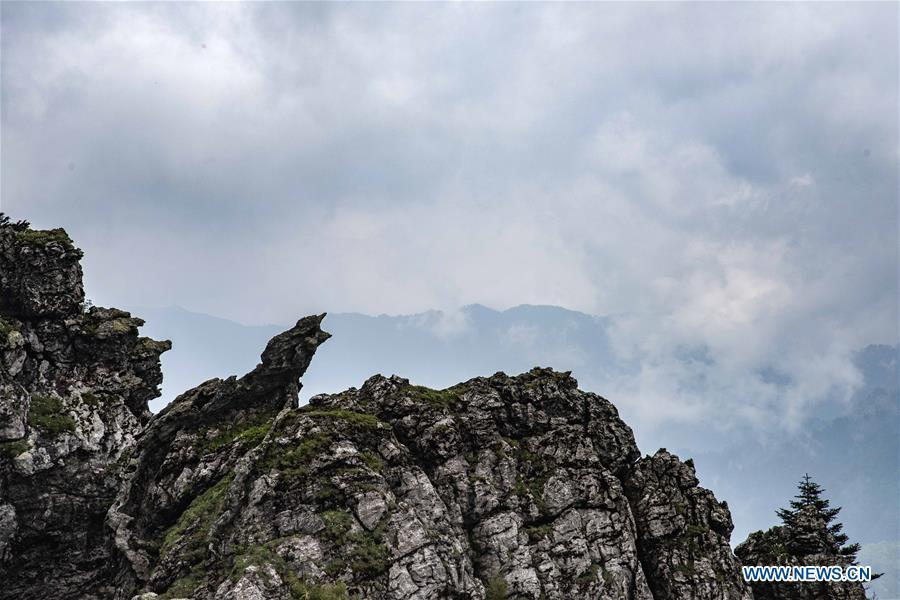 Photo taken on May 19, 2018 shows the scenery of Banbi Rocks in Shennongjia National Park in central China\'s Hubei Province. (Xinhua/Du Huaju)