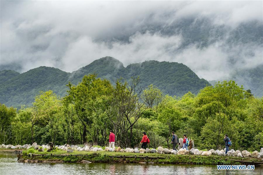 Visitors walk in Shennongjia National Park in central China\'s Hubei Province, May 18, 2018. (Xinhua/Du Huaju)