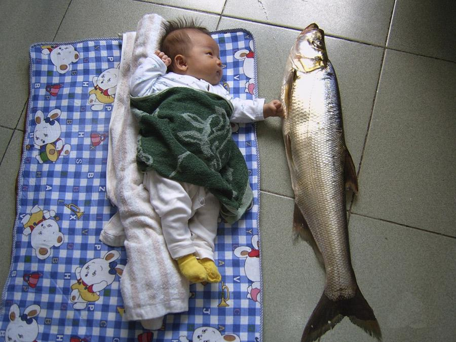 A baby poses with a giant croaker caught by his father at Thousand Island Lake near Hangzhou.  (Photo provided to China Daily) The festival will also present an exhibition of technology and food, demonstrating the achievements of Hangzhou\'s digital economy and highlighting its urban development. A collection of food imbued with elements of the Olympic and Asian Games will also be displayed. Chefs, athletes and sports nutrition experts from Asian cities will be invited to share their ideas and theories on healthy eating and discuss the relationship between sports and a healthy diet while promoting the Asian Games and Asian Cuisine Festival.  If you go  Taste of Asia photo exhibition Through May 22, Museum of the Qiantang River, Hangzhou.