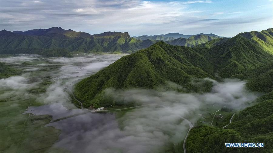 Aerial photo taken on May 16, 2019 shows the scenery of Dajiu Lake (nine lakes) wetland in Shennongjia, central China\'s Hubei Province. (Xinhua/Du Huaju)