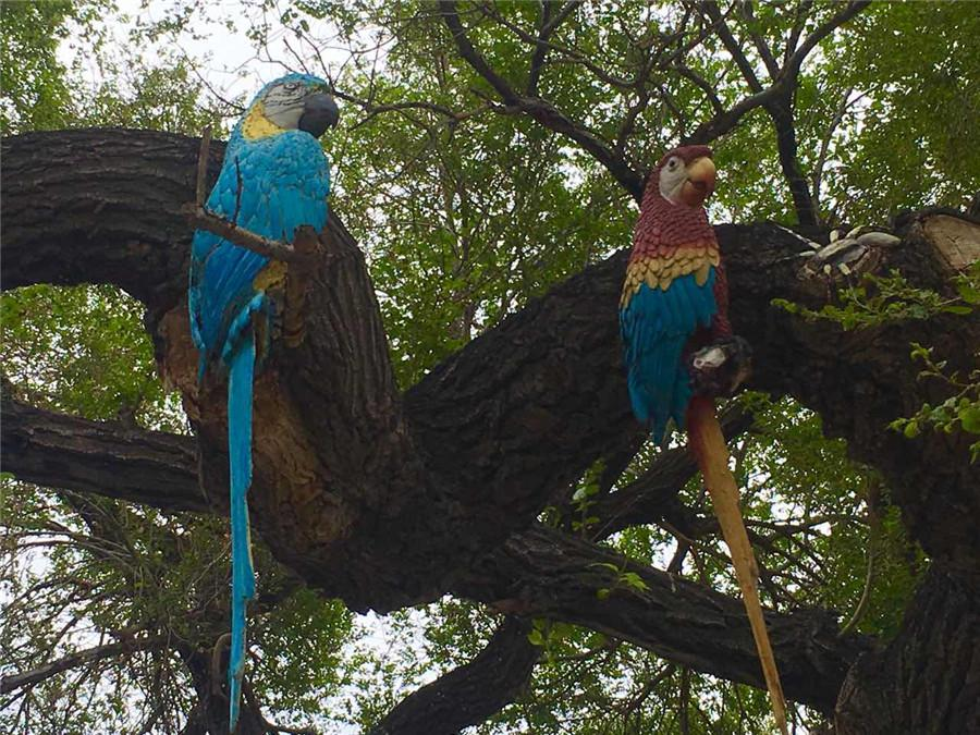 A tree trunk is painted with parrots in the Zoological and Botanical Garden in Changchun, capital of Northeast China\'s Jilin Province. (Photo/chinadaily.com.cn)