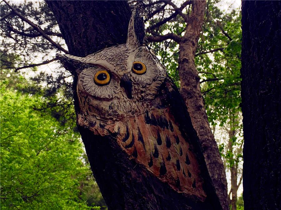 A tree trunk is painted with an owl in the Zoological and Botanical Garden in Changchun.  (Photo/chinadaily.com.cn)