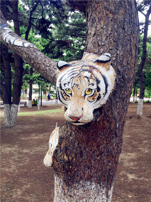 A tree trunk is painted with a tiger in the Zoological and Botanical Garden in Changchun. (Photo/chinadaily.com.cn)