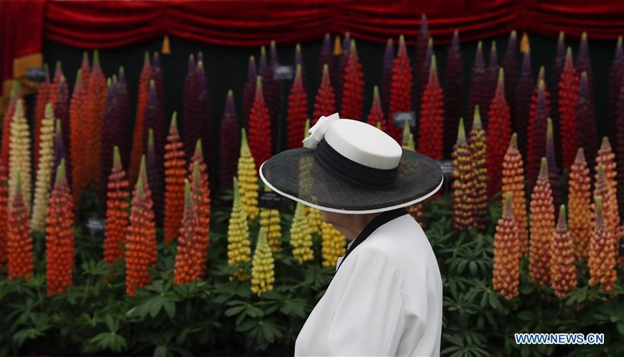 A woman visits the RHS (Royal Horticultural Society) Chelsea Flower Show press day in London, Britain on May 20, 2019. The annual RHS Chelsea Flower Show will open to the public here from May 21 to 25. (Xinhua/Han Yan)