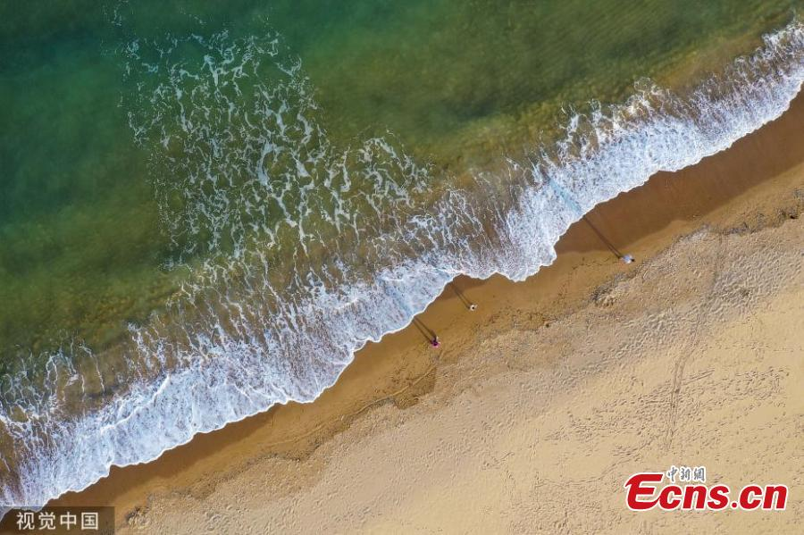 Green waves crash on golden sand of the beach in Qingdao, East China's Shandong province on May 21, 2019. (Photo/VCG)