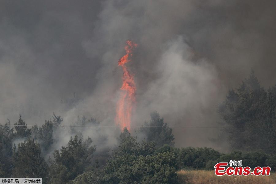 Fire engulfs trees in a burning forest amidst extreme heat wave near the Israeli city of Modiin on May 23, 2019. (Photo/Agencies)