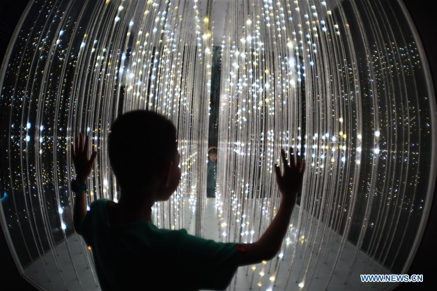 A visitor views an artwork in an exhibition featuring digital art during China International Big Data Industry Expo 2019 in Guiyang, capital of southwest China\'s Guizhou Province, May 27, 2019. The exhibition is a part of four-day China International Big Data Industry Expo 2019 that kicked off on May 26, 2019. (Xinhua/Yang Wenbin)