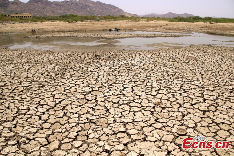 A general view of a lake running dry on a hot summer day near Ajmer on June 2, 2019. Temperatures passed 50 degrees Celsius (122 Fahrenheit) in northern India as an unrelenting heatwave triggered warnings of water shortages and heatstroke.(Photo/IC)