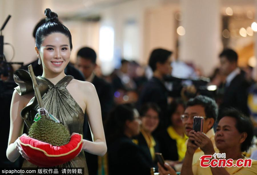 A treasured durian fruit has sold for a staggering 1.5 million baht (about $47,900) at an auction in Thailand. The kanyao variety - which is the most expensive in the world - attracted bids from dozens of wealthy fruit lovers at the event in Nonthaburi, central Thailand on June 1, 2019. Officials had handpicked the durian just a day before from a nearby farm where the minimum price of the fruit is 20,000 baht. But the luxury durian - chosen for its perfect size, shape, and ripeness - smashed the previous year's record of 800,000 baht when it was put up for sale at the King Of Durian 2019 festival. (1 USD equals about 31.33 Thai baht) (Photo/Sipaphoto)