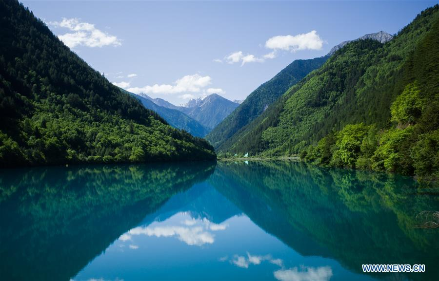 Photo shows a view of Lake Xiniuhai in the Jiuzhaigou National Park in southwest China\'s Sichuan Province, June 5, 2019. Due to damages caused by the magnitude-7.0 earthquake that hit here on Aug. 8, 2017, the park has been temporarily closed since July 2018 for renovation. (Xinhua/Meng Dingbo)
