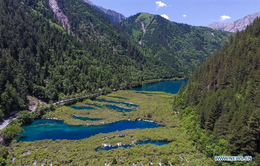 Aerial photo shows the scenery of the Jiuzhaigou National Park in southwest China\'s Sichuan Province, June 5, 2019. Due to damages caused by the magnitude-7.0 earthquake that hit here on Aug. 8, 2017, the park has been temporarily closed since July 2018 for renovation. (Xinhua/Xue Yubin)