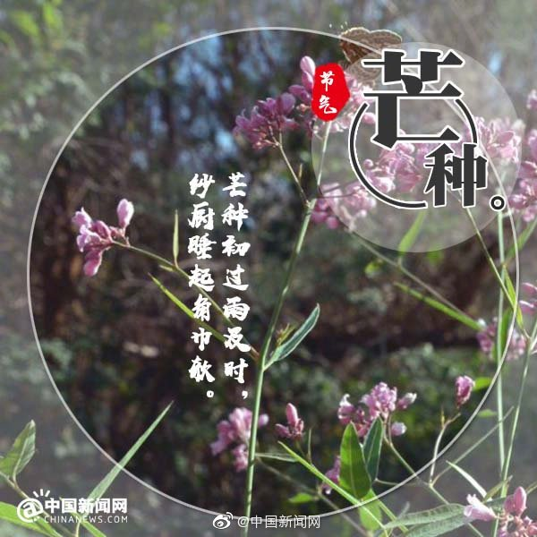 Say farewell to the flora