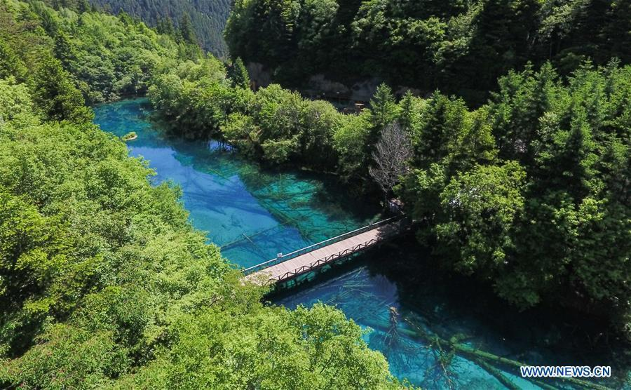 Aerial photo shows a view of Lake Wuhuahai in the Jiuzhaigou National Park in southwest China\'s Sichuan Province, June 5, 2019. Due to damages caused by the magnitude-7.0 earthquake that hit here on Aug. 8, 2017, the park has been temporarily closed since July 2018 for renovation. (Xinhua/Xue Yubin)