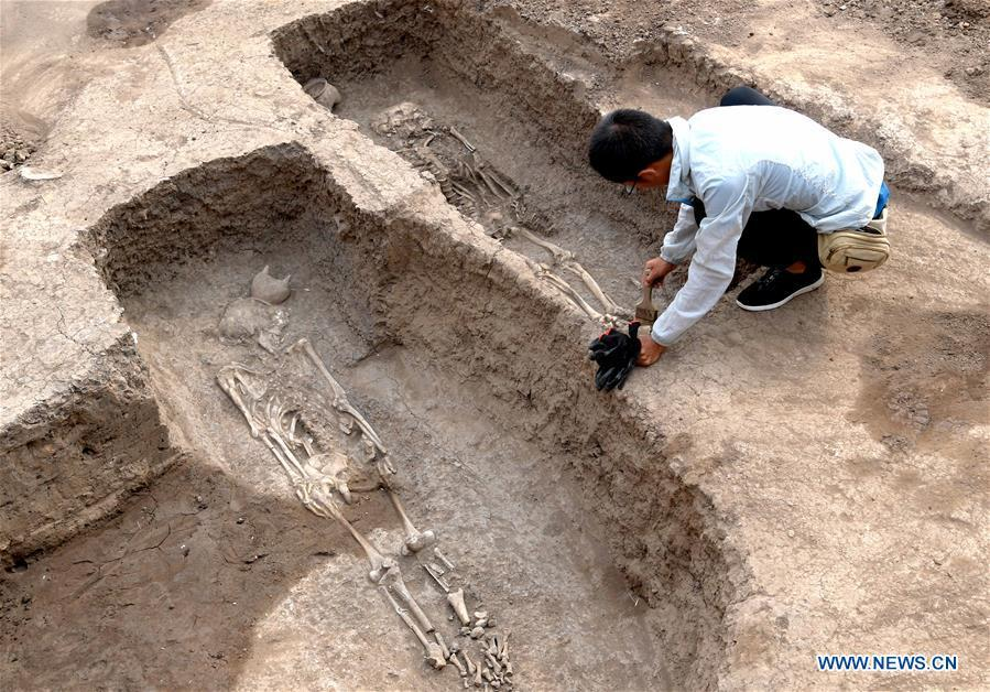 An archaeology staff member cleans a family tomb of bronzeware artisans of the Shang Dynasty in Anyang, central China\'s Henan Province, June 5, 2019. Archaeologists in central China\'s Henan Province said they have identified 42 tombs unearthed since 2017 to be a family tomb of bronzeware artisans dating back over 3,000 years. (Xinhua/Li An)
