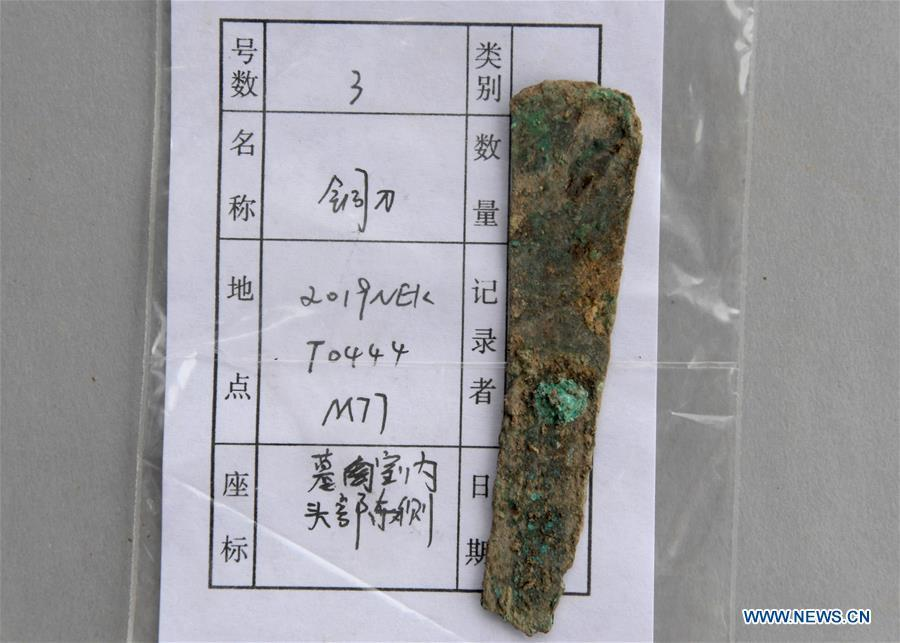 A copper knife unearthed from the family tomb of bronzeware artisans of the Shang Dynasty is displayed in Anyang, central China\'s Henan Province, June 5, 2019. Archaeologists in central China\'s Henan Province said they have identified 42 tombs unearthed since 2017 to be a family tomb of bronzeware artisans dating back over 3,000 years. (Xinhua/Li An)