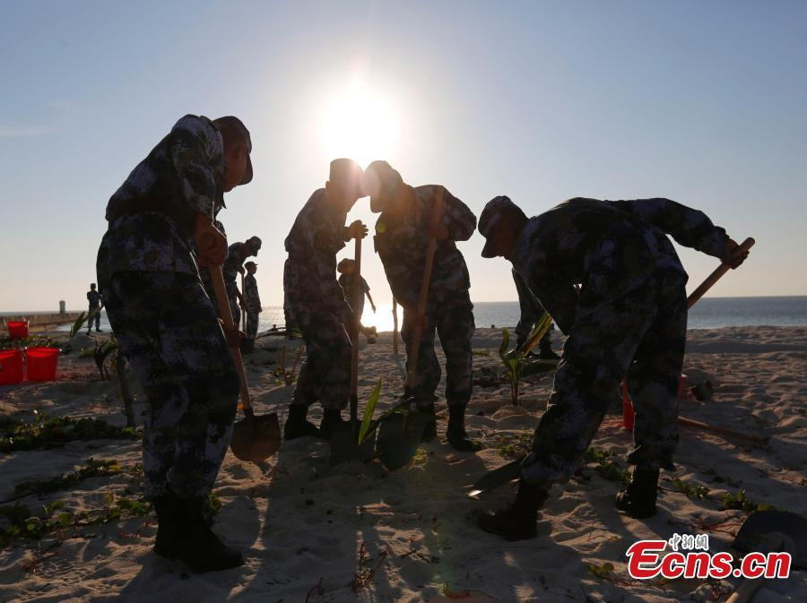 PLA Navy soldiers work on Zhongjian Island of Xisha Islands in South China Sea, Hainan Province. Over dozens of years, soldiers have transformed the barren site into a lush area despite the harsh environment of high temperatures, high humidity, high salt and lack of fresh water. (Photo: China News Service/Wang Xiaobin)