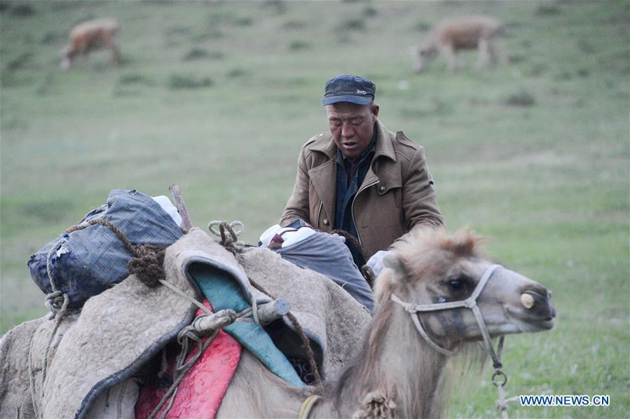 A herdsman packs up for a trip to summer pasture in Fuhai County of Altay, northwest China\'s Xinjiang Uygur Autonomous Region, on June 6, 2019. As summer comes, herdsmen of Kazak ethnic group here are busy with transferring livestock to summer pastures. (Xinhua/Ding Lei)
