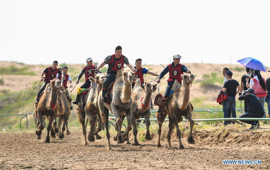 Participants take part in a camel riding contest during a desert Nadam Fair held in Naiman Banner, Tongliao City, north China\'s Inner Mongolia Autonomous Region, June 10, 2019. (Xinhua/Peng Yuan)