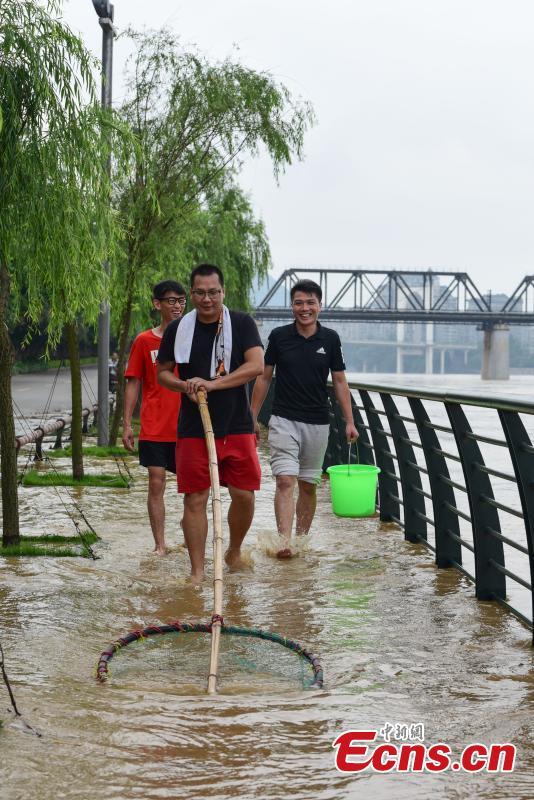 Residents catch fish on a flooded street near the Liujiang River after heavy rainfall upstream in Liuzhou City, Southwest China's Guangxi Zhuang Autonomous Region, June 10, 2019. (Photo: China News Service/Wang Yizhao)