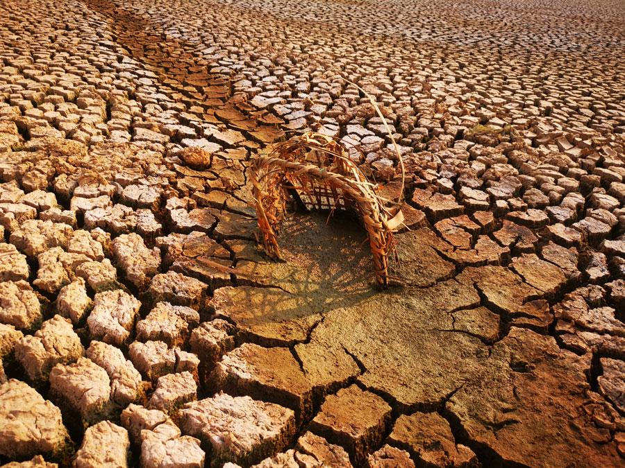 The Heinigou Reservoir, which can hold 600,000 cubic meters of water, has completely dried up in Xiaobaihu township of Luliang county in Yunnan. (Photo/chinadaily.com.cn)  Severe drought has hit Yunnan in Southwest China, with more than two million people facing water shortage.  The drought has affected an area of more than one million hectares, according to the latest data from the Ministry of Water Resources.