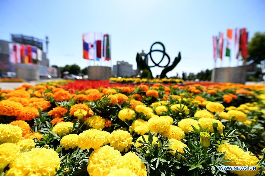A decorating parterre to greet the fifth summit of the Conference on Interaction and Confidence Building Measures in Asia (CICA) is seen in Tajikistan\'s capital Dushanbe, June 13, 2019. (Xinhua/Sadat)