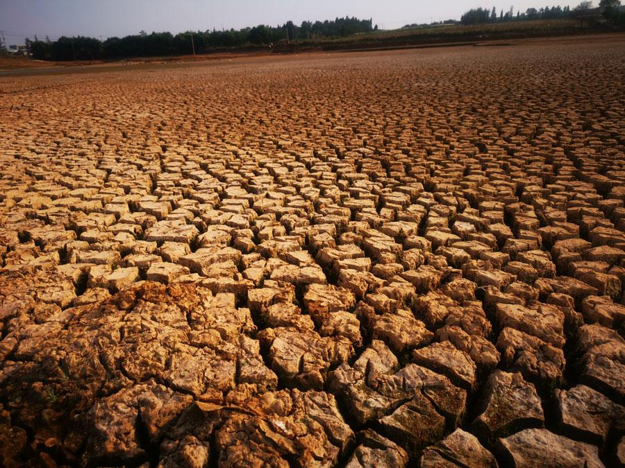 The Heinigou Reservoir, which can hold 600,000 cubic meters of water, has completely dried up in Xiaobaihu township of Luliang county in Yunnan. (Photo/chinadaily.com.cn)