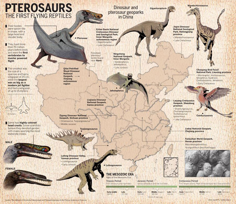 Pterosaur museum to showcase fossil-rich region