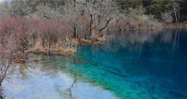 Jiuzhaigou scenic spot recovers well after quake