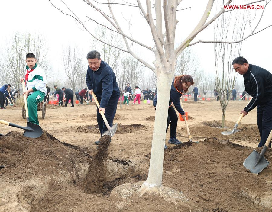 Xi stresses people-centered approach in land greening programs