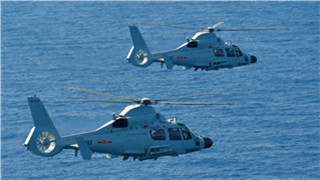 PLA navy tests ship-borne choppers in S China Sea targets