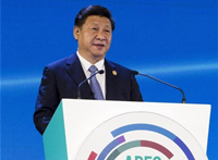 Xi attends G20, APEC Summits
