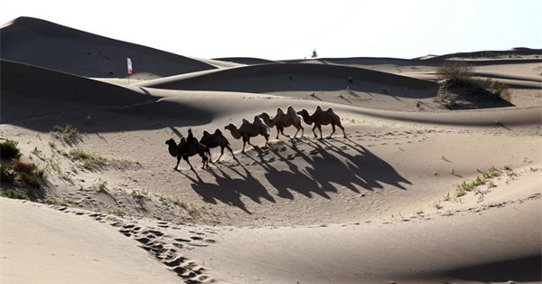 Transformation of Kubuqi Desert: From barren sand dunes to enchanting paradise