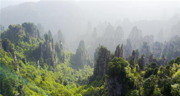 Scenery of Zhangjiajie national forest park in central China