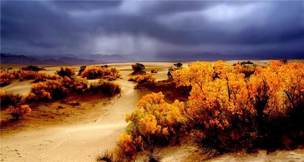 Autumn scenery of world