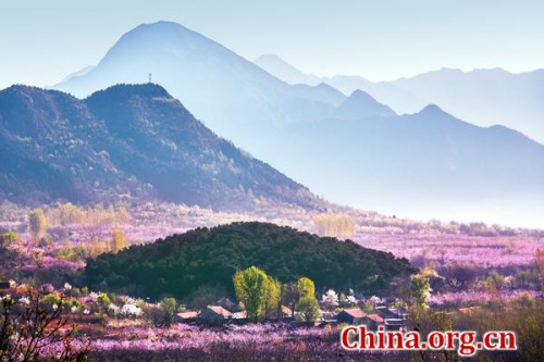 Int'l Peach Blossom Music Festival kicks off in Beijing's Pinggu district