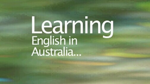 Nexus: Learning English